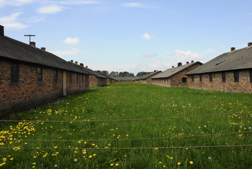 Birkenau Women and Children's Barracks