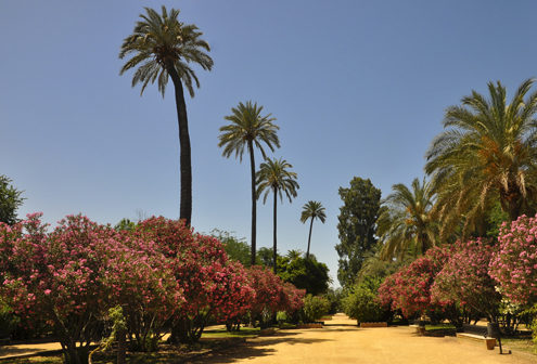 Gardens of Catalina de Ribera