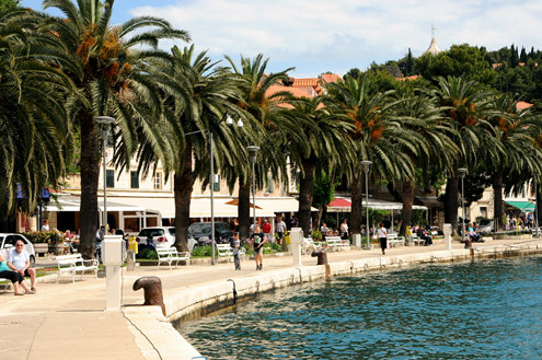 Cavtat's Harbor